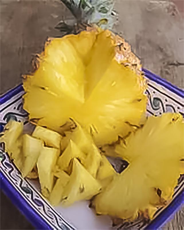 L'Ananas, fruit d'Ananas comosus