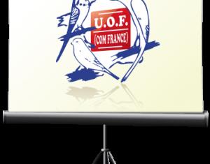 Les Visios de l'UOF
